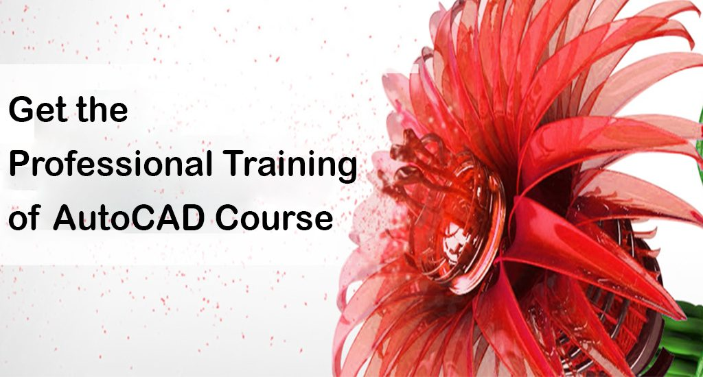Learn AutoCAD Designing Course in Yamuna Vihar